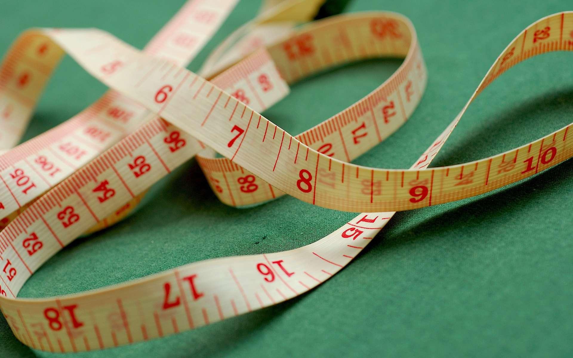 L'obésité est à l'origine de nombreuses maladies parfois mortelles, comme le diabète ou des pathologies cardiovasculaires. Dans le monde, le surpoids a atteint le stade pandémique, et il y a désormais davantage de gens qui souffrent de trop manger que de personnes en situation de malnutrition. Et encore, la situation pourrait être pire que prévue, puisque l'IMC, indicateur très utilisé, pourrait sous-estimer l'obésité... © Rolenf-Stock Free Images
