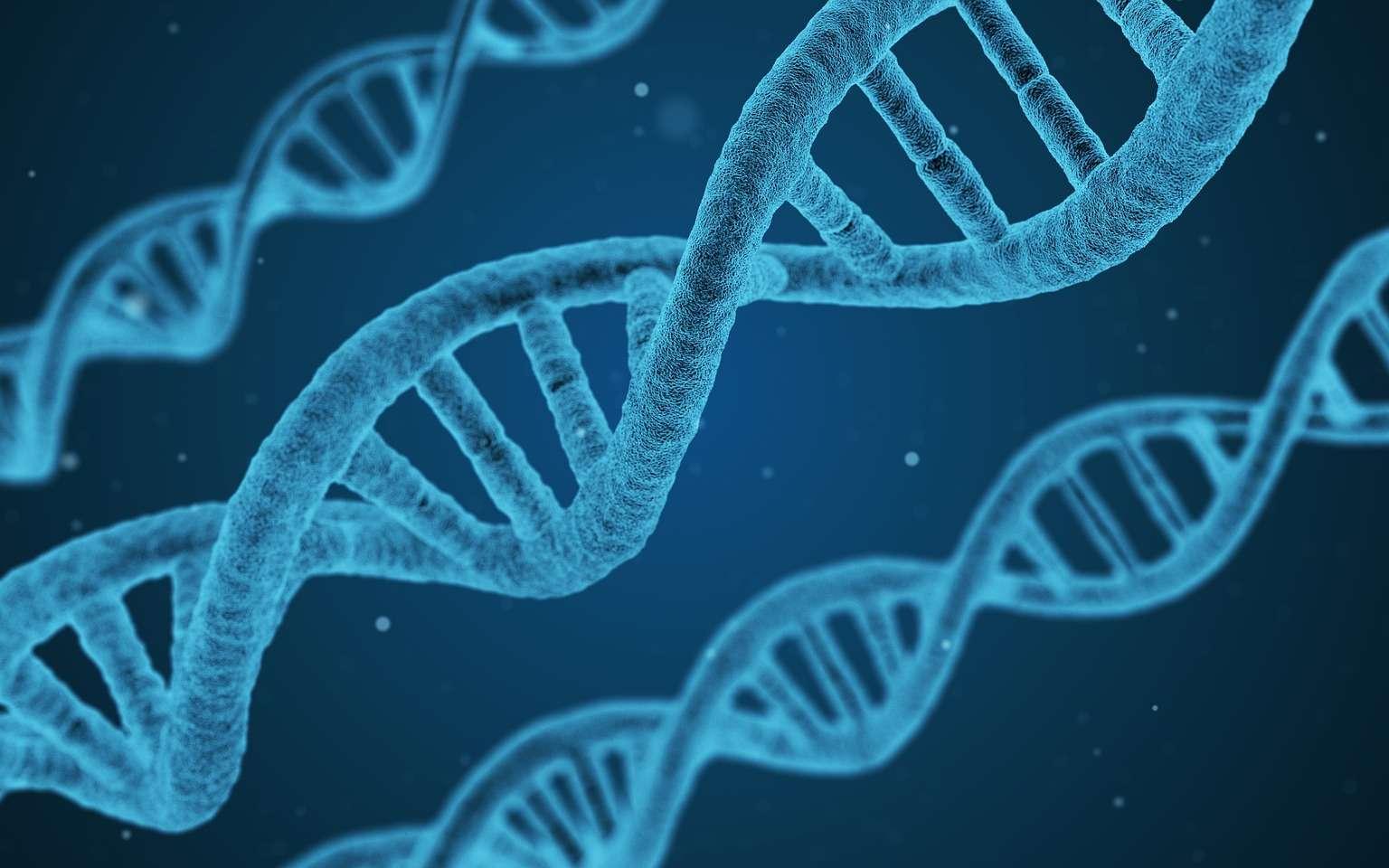 Illustration d'une molécule d'ADN. © Arek Socha, Pixabay