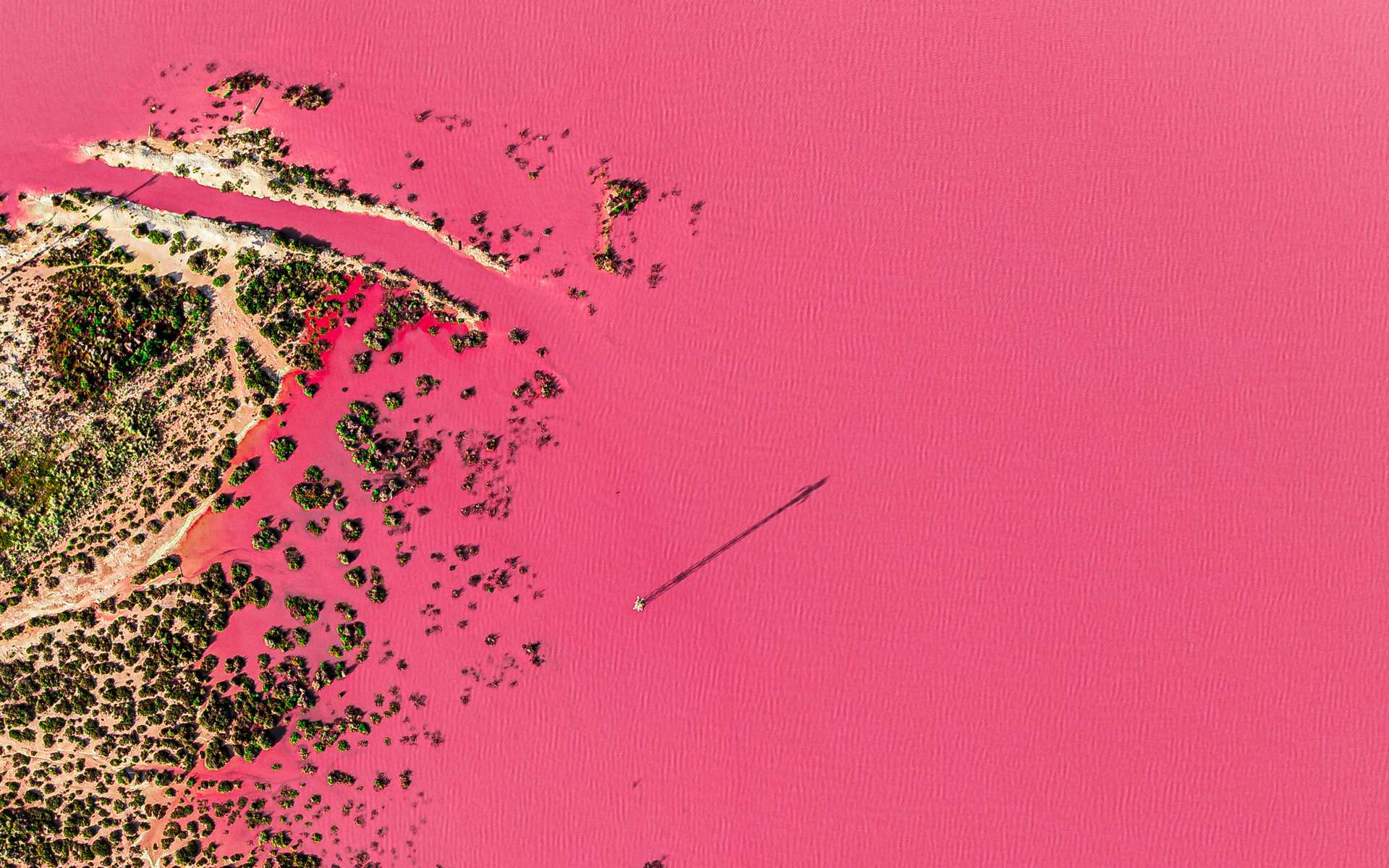 Magnifique lac naturellement rose situé à Torrevieja, Espagne. © iAmTasweer, Adobe Stock