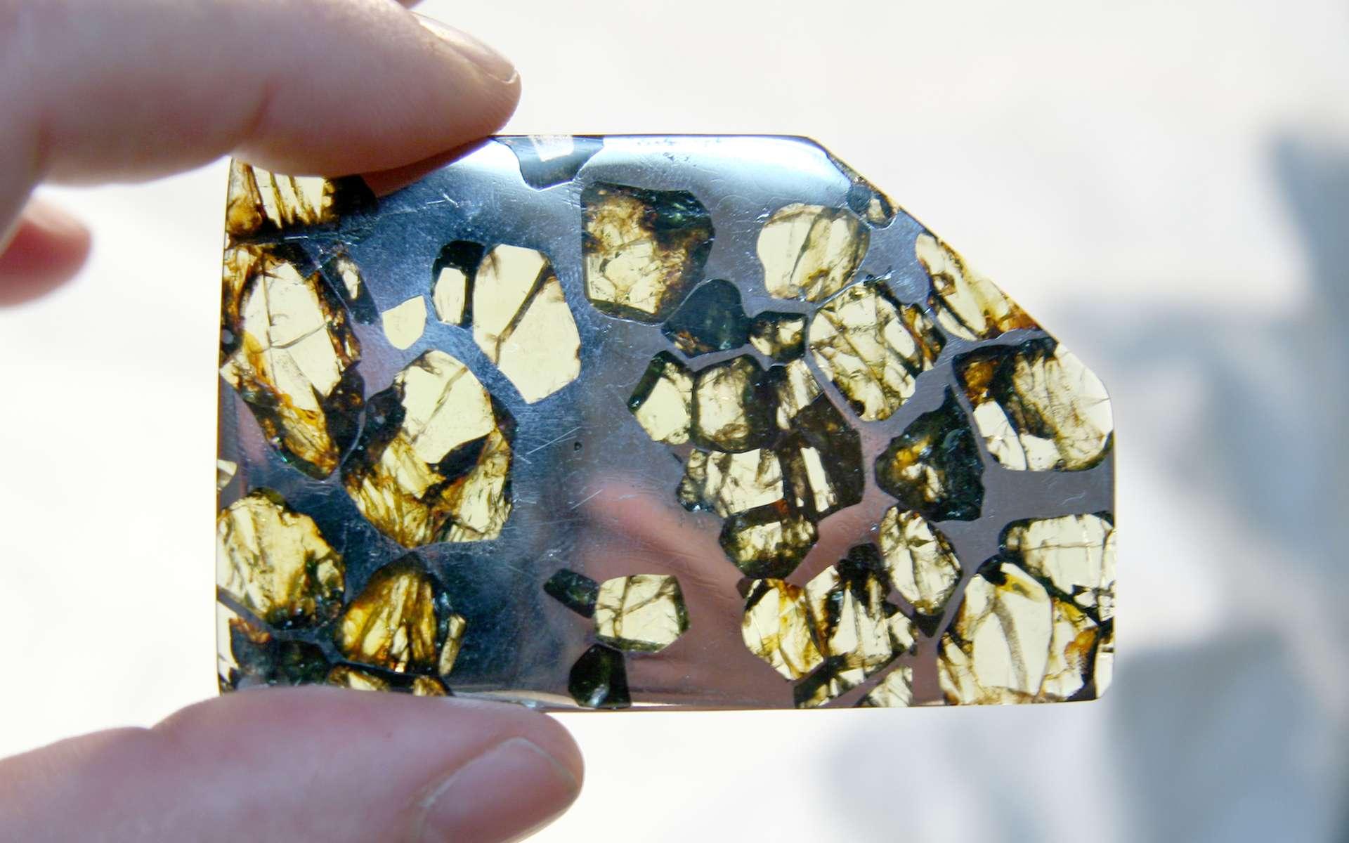 Comment reconnaître une météorite ? Ici, un fragment de la météorite Esquel. Il s'agit d'une pallasite trouvée en 1951 dans la province de Chubut, en Argentine. © Doug Bowman, Wikimedia Commons, CC by 2.0