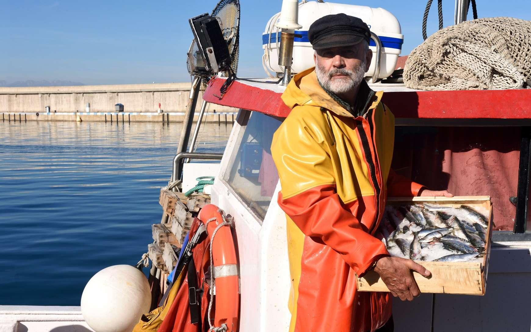 Dans différentes régions du monde, les pêcheries enregistrent une baisse des prises. © curto, Fotolia