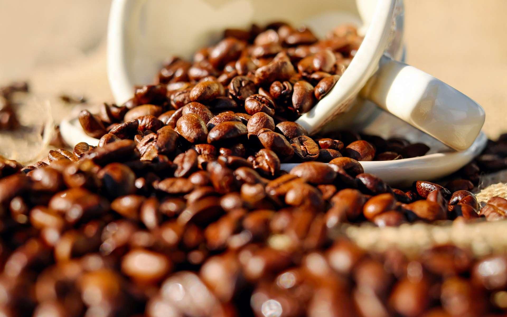En achetant par erreur du « déca » à la place du café avec caféine, les parents de cet enfant ont prouvé l'efficacité du traitement pour une maladie orpheline. © Pexels