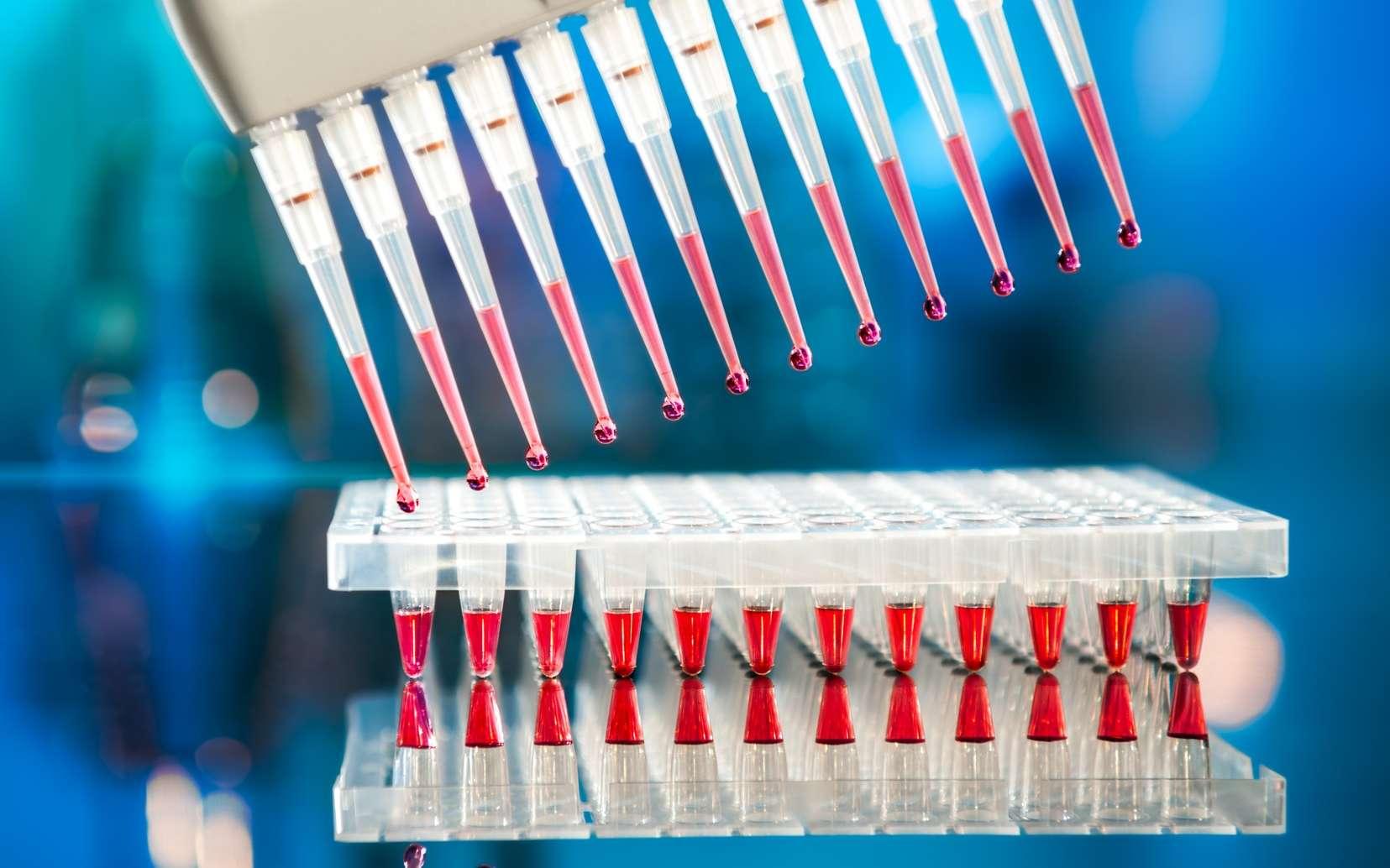Les oligonucléotides servent d'amorces aux réactions de PCR. © tilialucida, Fotolia