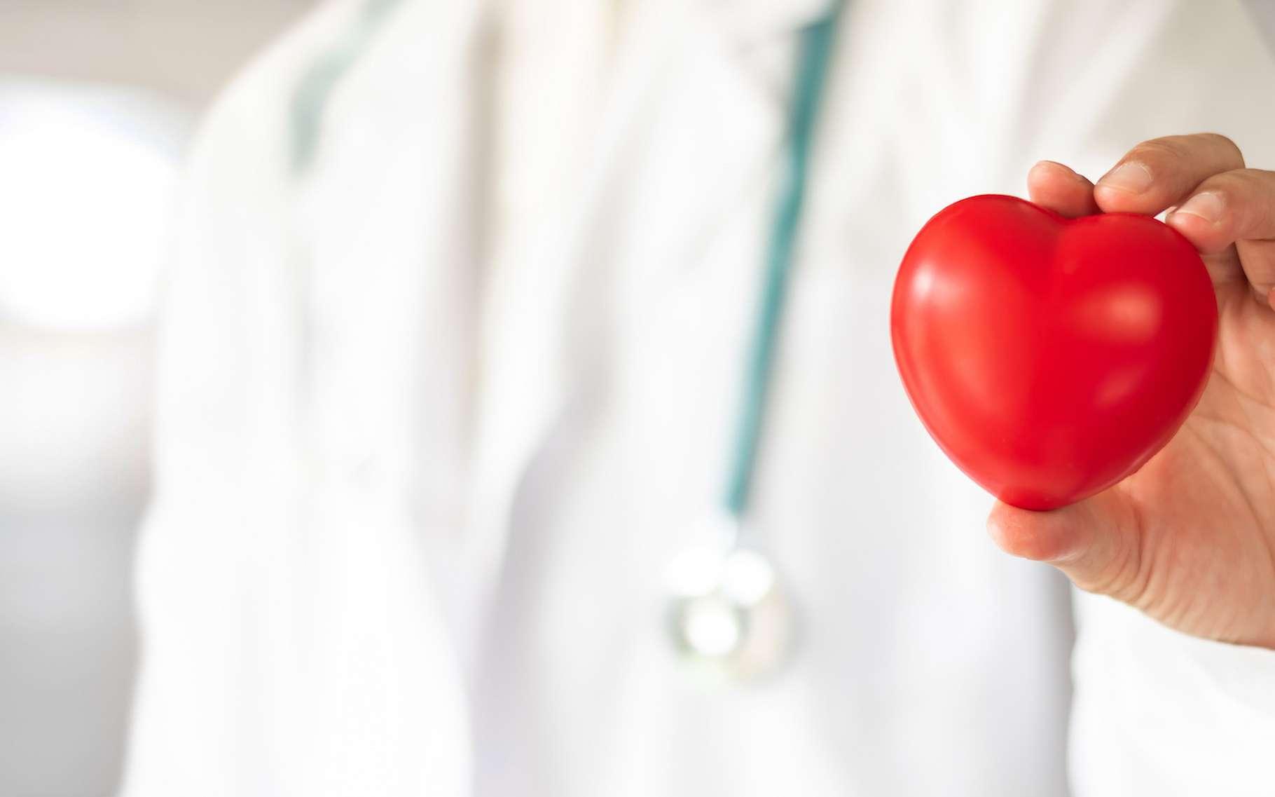 L'être humain semble être le plus vulnérable aux maladies cardiovasculaires de tous les mammifères. Des chercheurs de l'université de Californie à San Diego (États-Unis) pensent avoir compris pourquoi. © Chinnapong, Fotolia