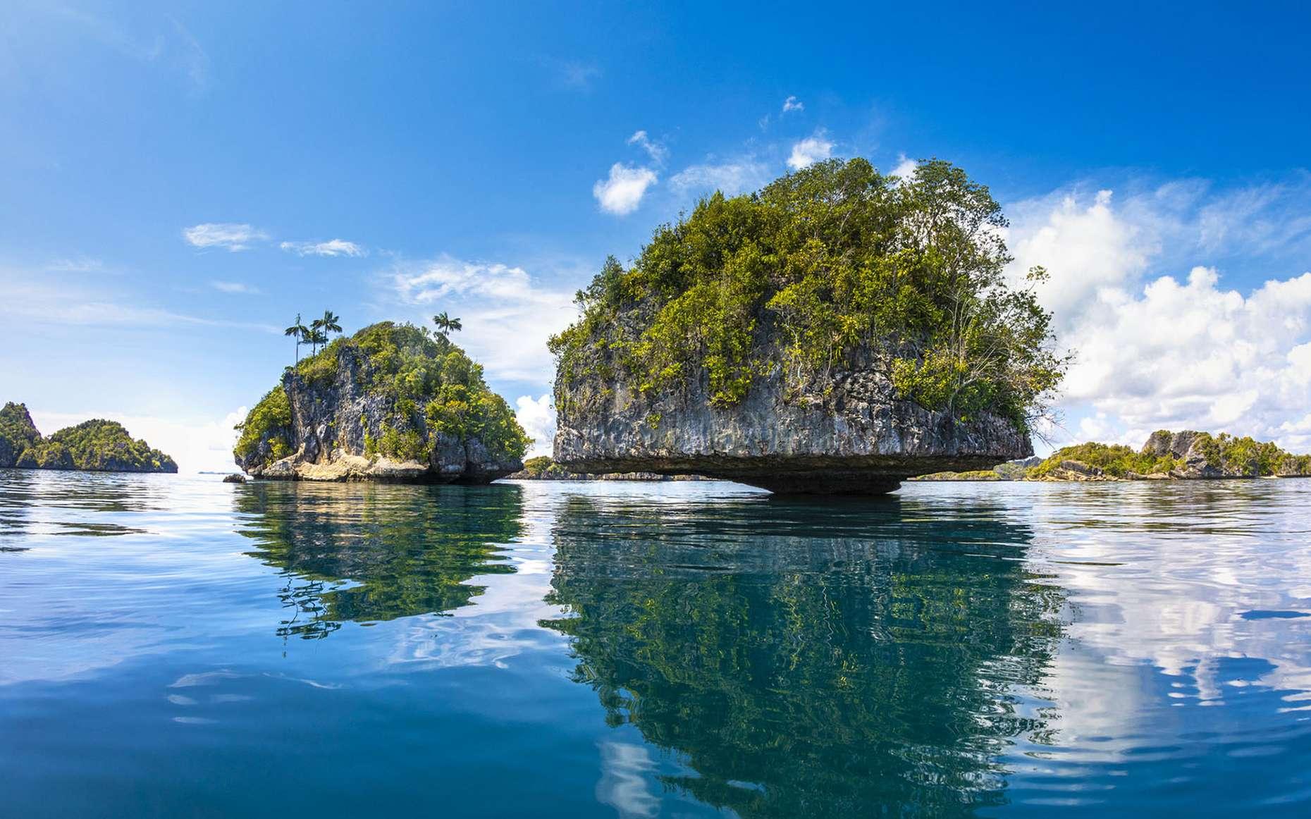 Partons à la découverte de Raja Ampat avec Gabriel Barathieu pour une fabuleuse plongée haute en couleur. © Gabriel Barathieu