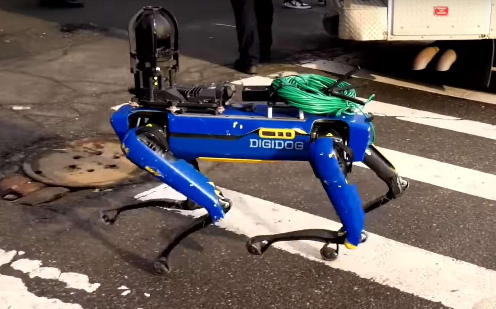 Spot, alias Digidog, en intervention à New York. © FreedomNewsTV