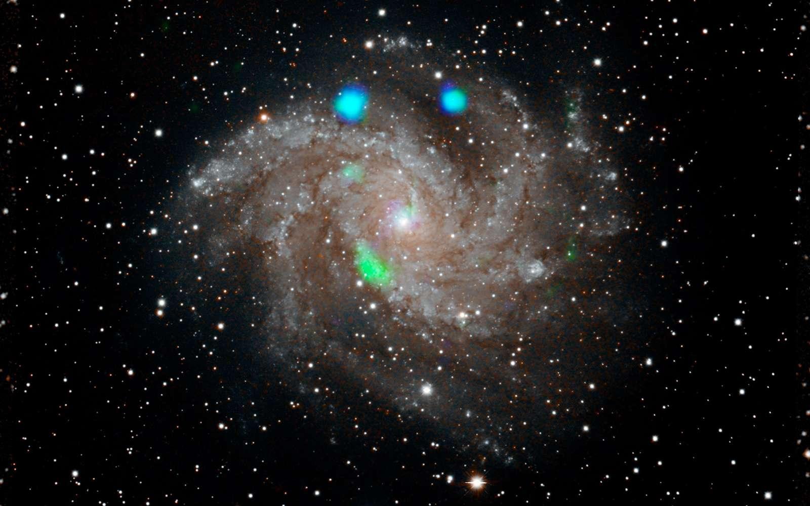 Cette image en lumière visible de la galaxie Fireworks (NGC 6946) provient du Digital Sky Survey et est superposée aux données de l'observatoire Nustar de la Nasa en fausses couleurs (en bleu et vert). ULX4 est visible en vert. © Nasa, JPL-Caltech