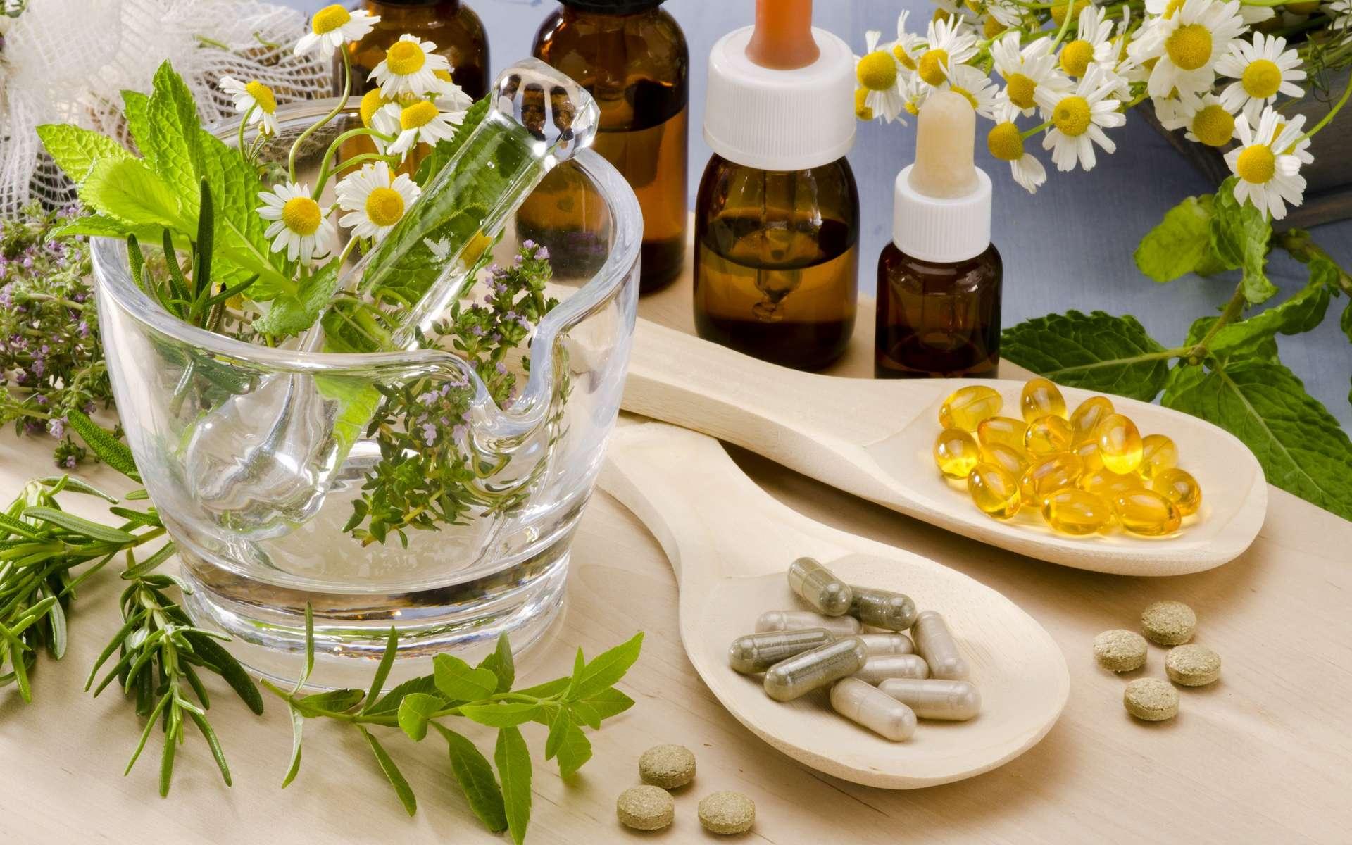 Le naturopathe travaille à partir de médecine douce et naturelle afin d'apporter une meilleure qualité de vie à ses patients. © pat_hastings, Adobe Stock.