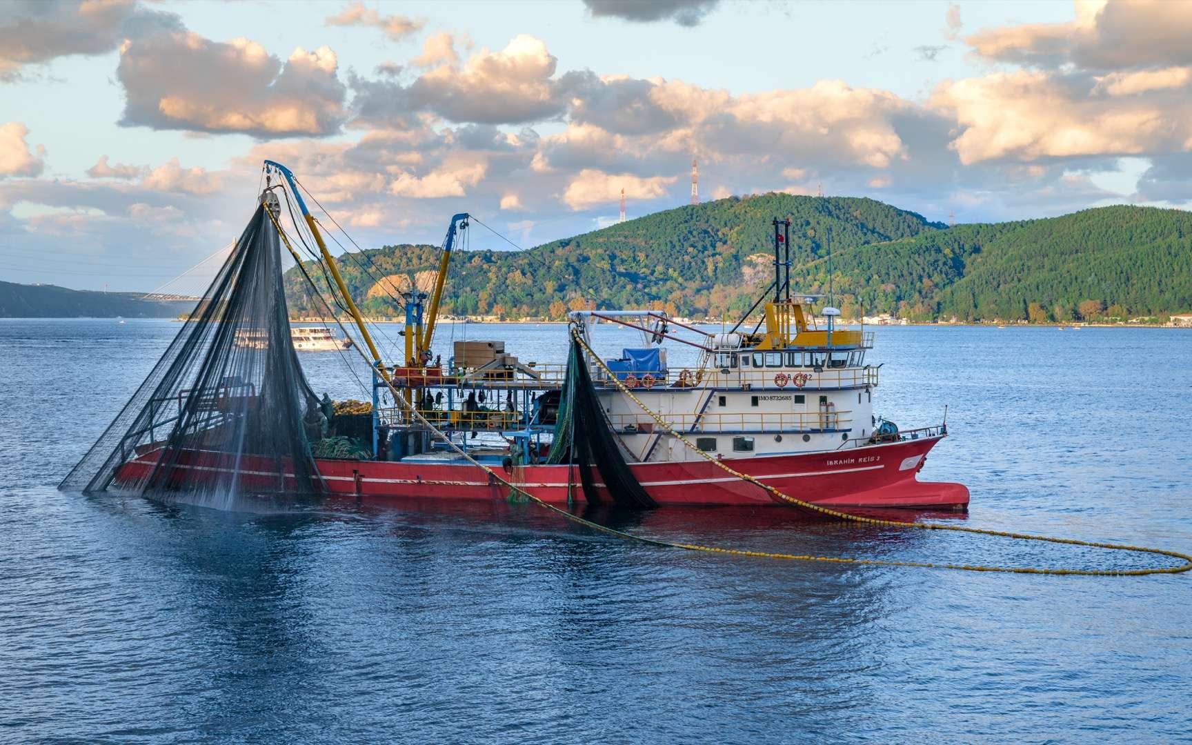 Quel sera l'impact du changement climatique sur l'agriculture et la pêche sur nos sociétés ? © Can, Adobe Stock
