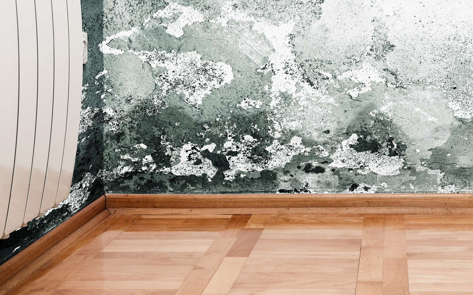 Il existe différents moyens pour lutter contre les remontées capillaires pour ne pas avoir de problèmes d'humidité. © jocic, Shutterstock