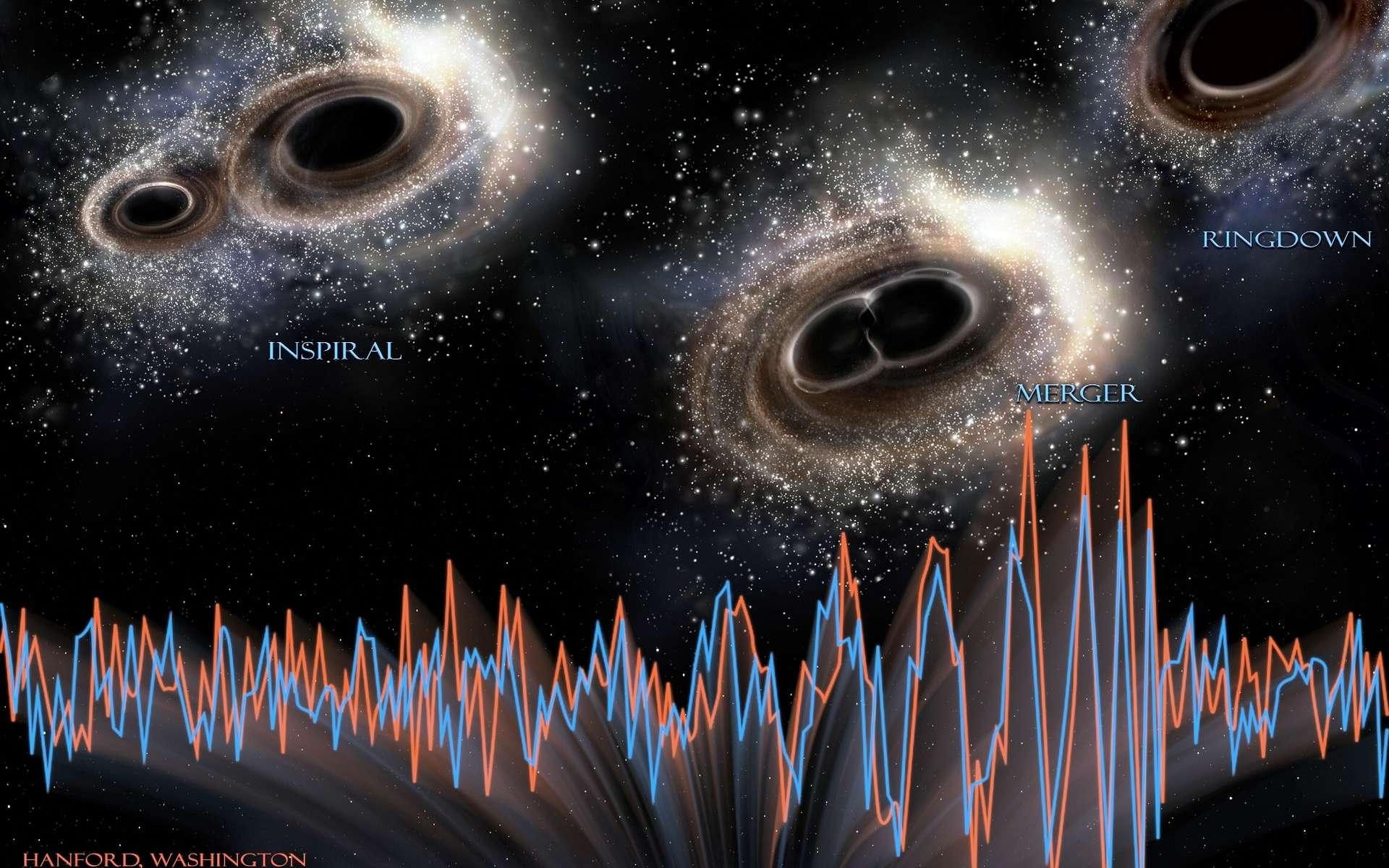 Inspiral, merger, ringdown : ce sont les noms anglais des trois étapes qui ont conduit deux trous noirs à se rapprocher en décrivant une spirale à la suite des pertes d'énergies sous forme d'ondes gravitationnelles, puis à entrer en collision pour finalement donner un seul trou noir. L'horizon des évènements de l'objet compact final a vibré, telle une cloche frappée, en émettant des ondes gravitationnelles. L'évènement a duré moins d'une seconde. Les courbes montrent les signaux détectés par les deux interféromètres Ligo, à Handford, et à Livingston, aux États-Unis, le 14 septembre 2015 et elles sont en correspondance avec la chronologie des évènements. © Ligo, NSF, Aurore Simonnet