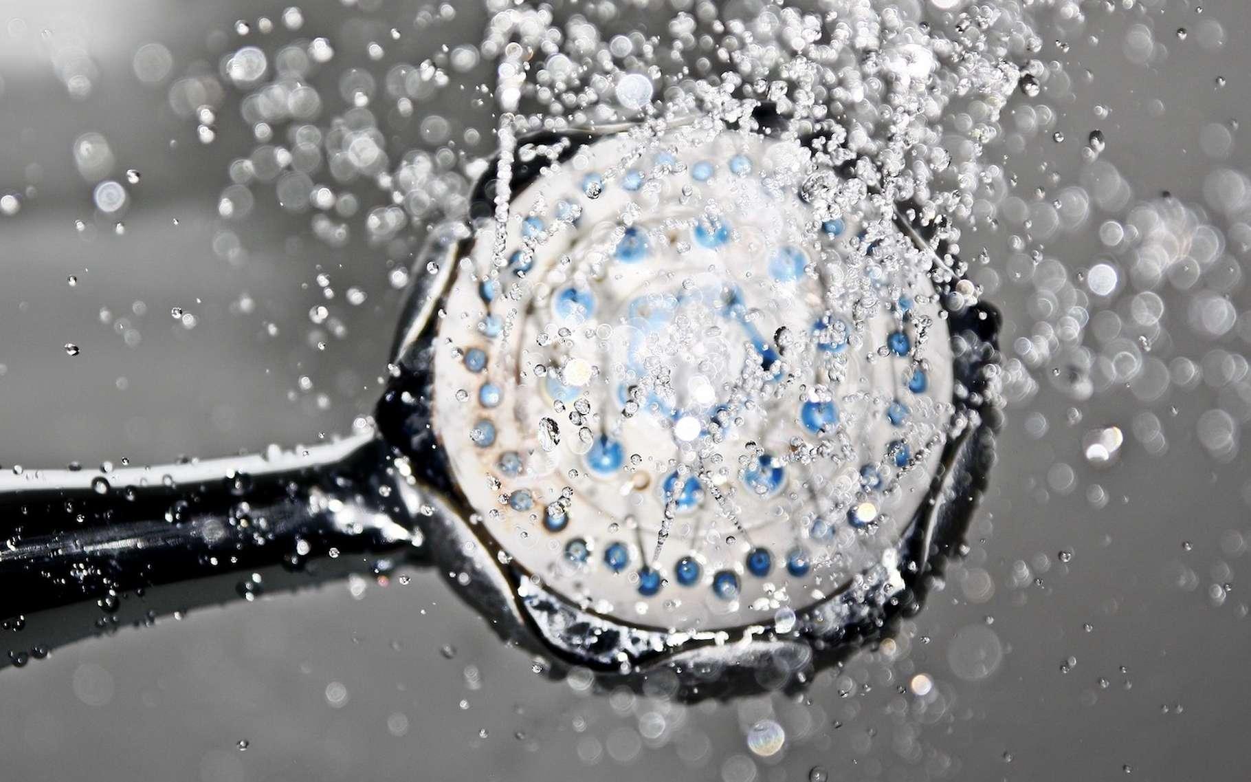 Pour économiser l'eau de la douche, il y a de nombreuses astuces faciles à mettre en œuvre. © 955169, Pixabay License