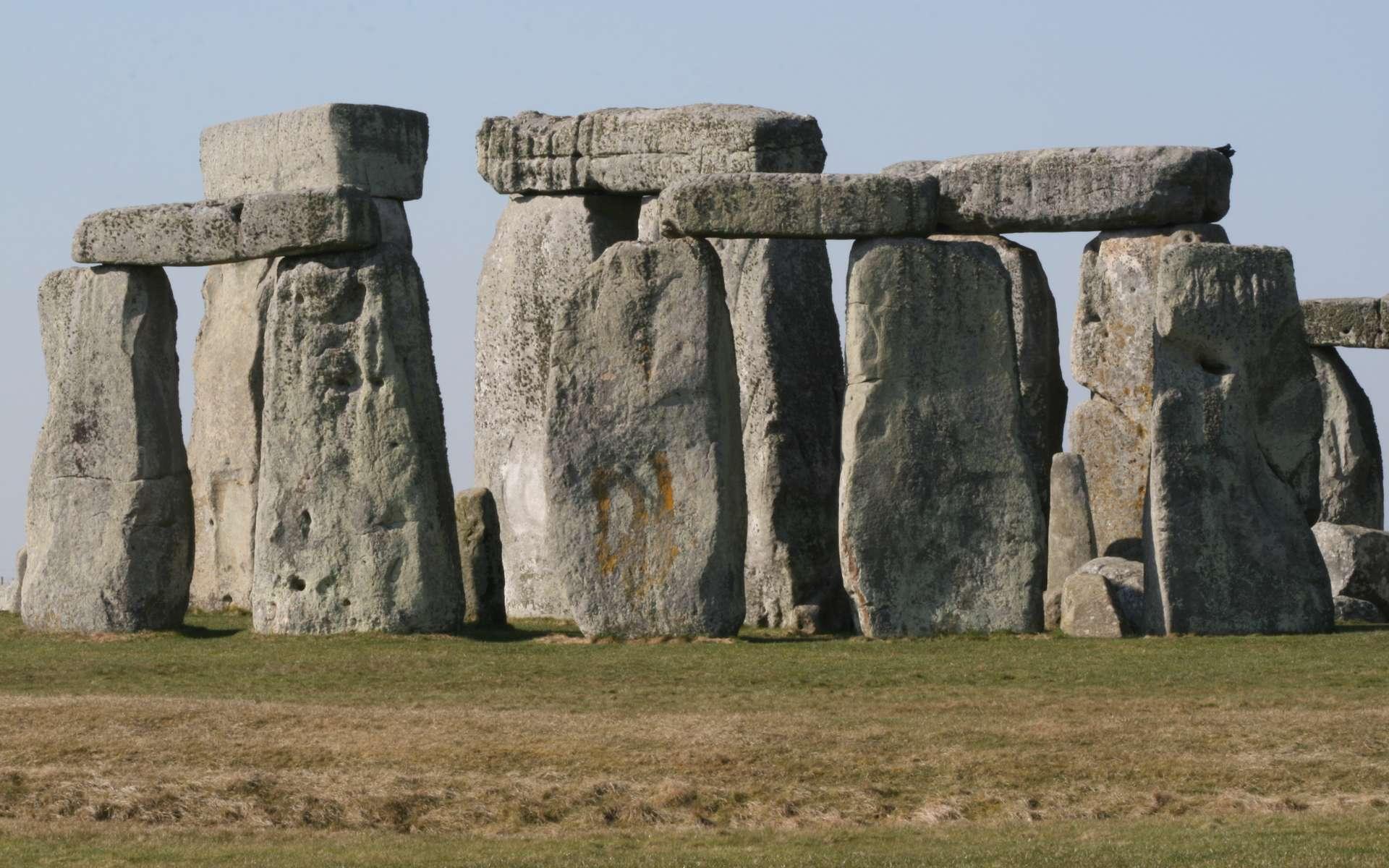 Les mégalithes de Stonehenge ont-ils été érigés à l'aide de graisse de porc ? © Peter Reed, Flickr