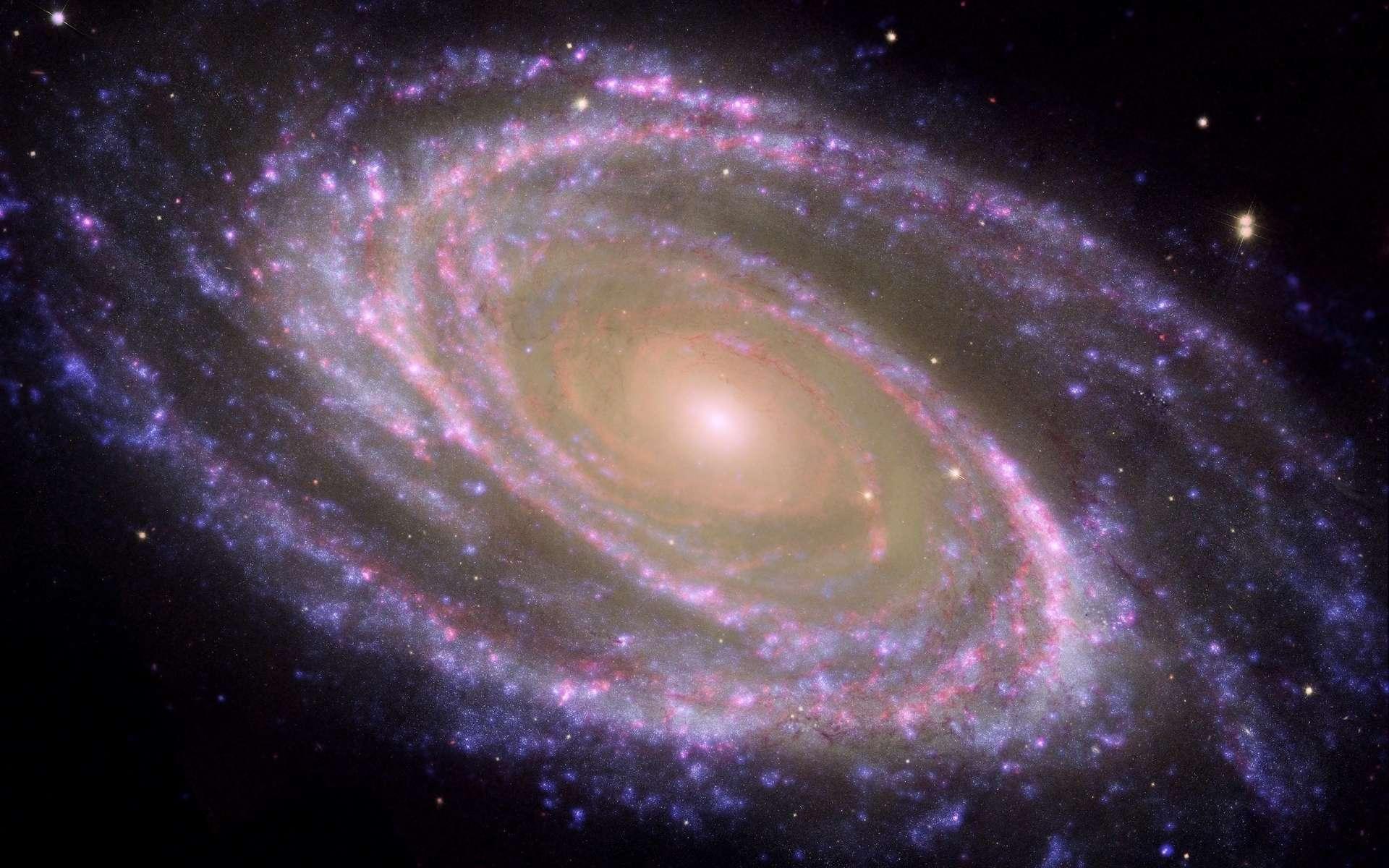 M81 est une galaxie spirale située à 11,8 millions d'années-lumière de la Voie lactée dans la constellation de la Grande Ourse. Ses bras spiraux sont bien visibles en fausses couleurs sur cette image composite issues des observations dans le visible, l'infrarouge et l'ultraviolet faites avec Hubble, Spitzer et Galex. © Nasa