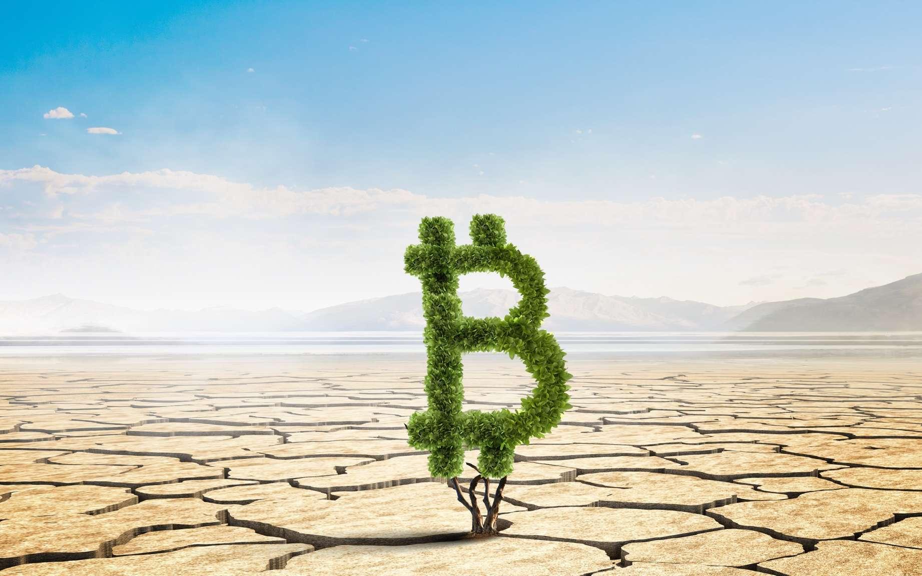 Le bitcoin consommerait 10 fois plus d'électricité que le géant Google. © Sergey Nivens, Adobe Stock