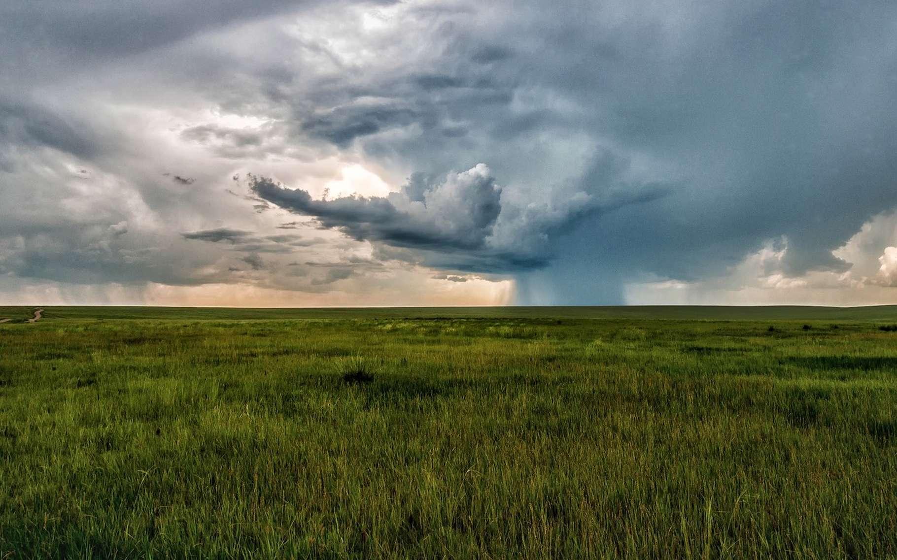 En été, la steppe de Mongolie ressemble aux prairies d'Amérique du Nord. © Kanenori, Pixabay, CC0 Creative Commons