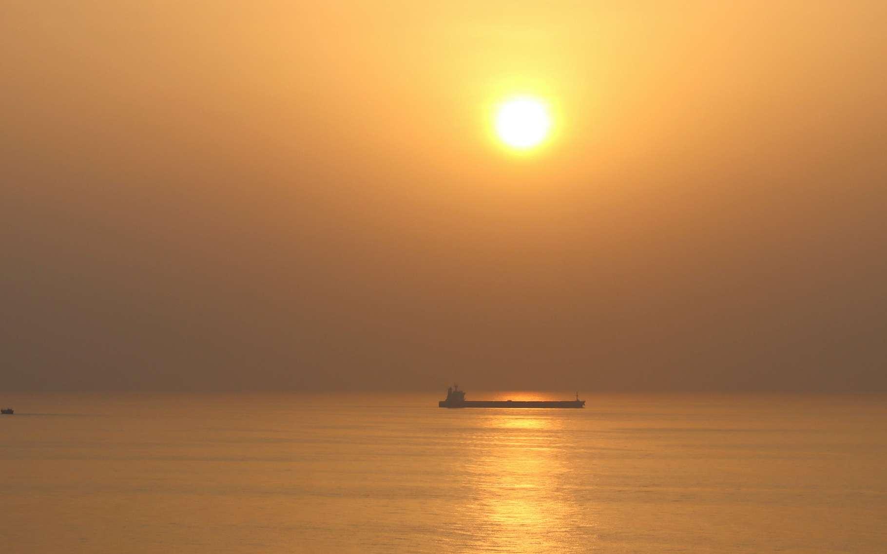 Du côté du golfe Persique, notamment, des épisodes de chaleur et d'humidité insoutenables ont déjà été enregistrés ces dernières années. Et avec le réchauffement climatique, la tendance est à l'intensification et à la multiplication de ces phénomènes. © Lotharingia, Adobe Stock