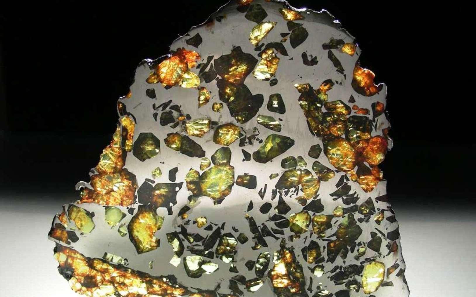 La météorite Esquel est une pallasite trouvée en 1951 dans la province de Chubut en Argentine. Il s'agit de la plus belle des météorites constituée d'une trame de fer et de nickel dans laquelle se détachent des grains d'olivine. © L. Carion, carionmineraux.com