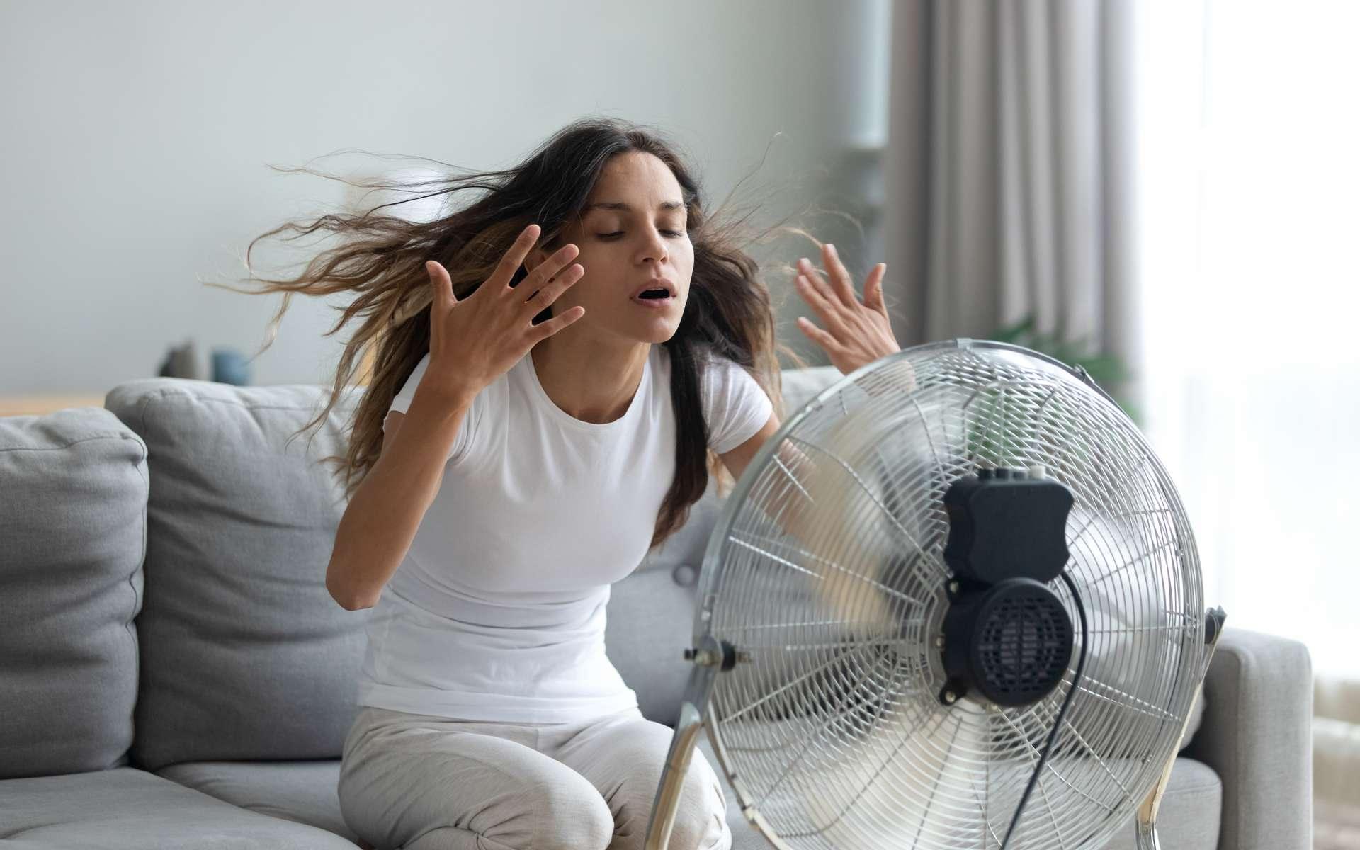 « 37 % de tous les décès liés à la chaleur, étaient attribuables au réchauffement climatique ». © fizkes, Adobe Stock