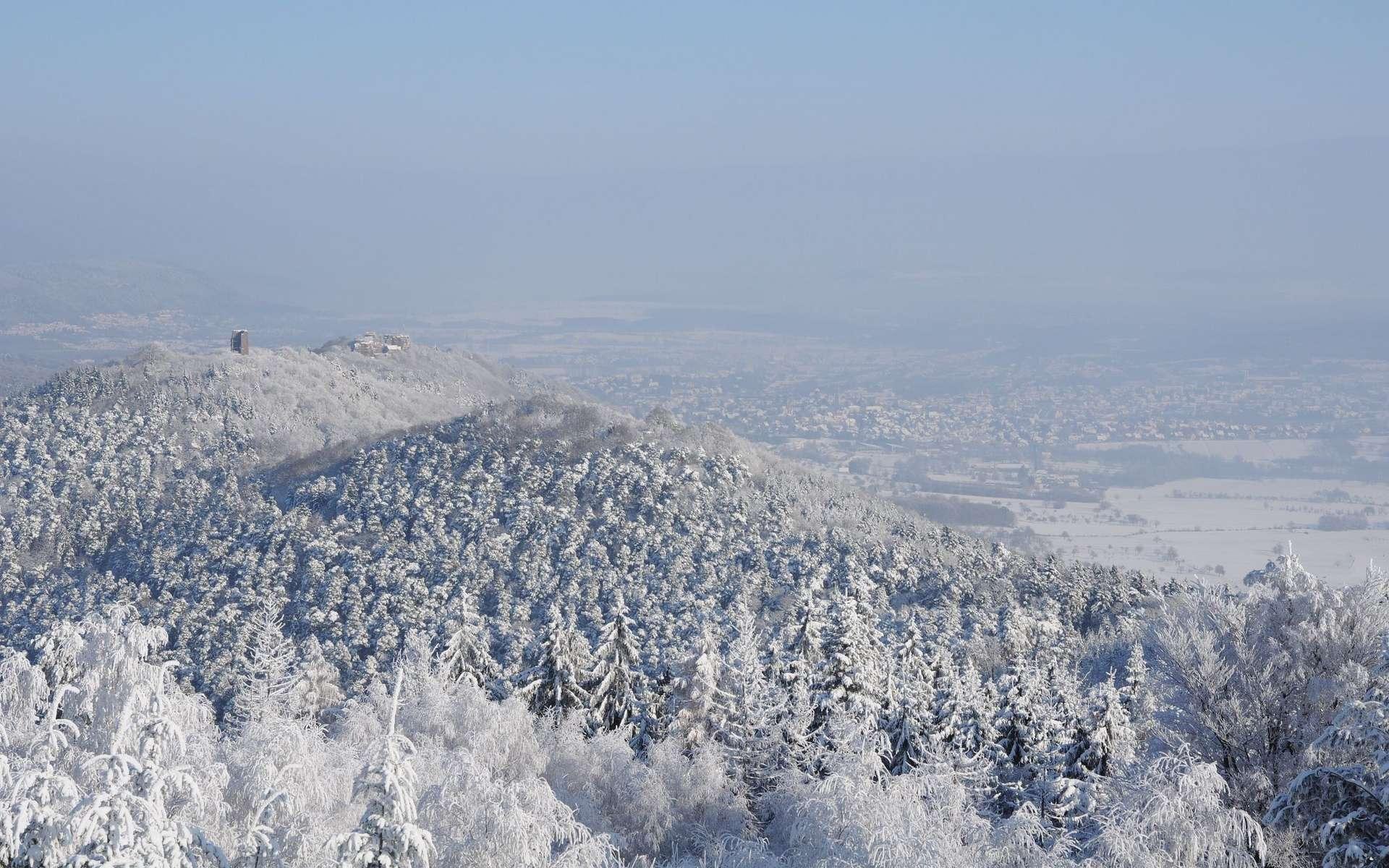 Le parc naturel régional des Vosges du Nord, prochainement sur la liste verte des aires protégées de l'UICN. © Sylvain Citerne, Flickr