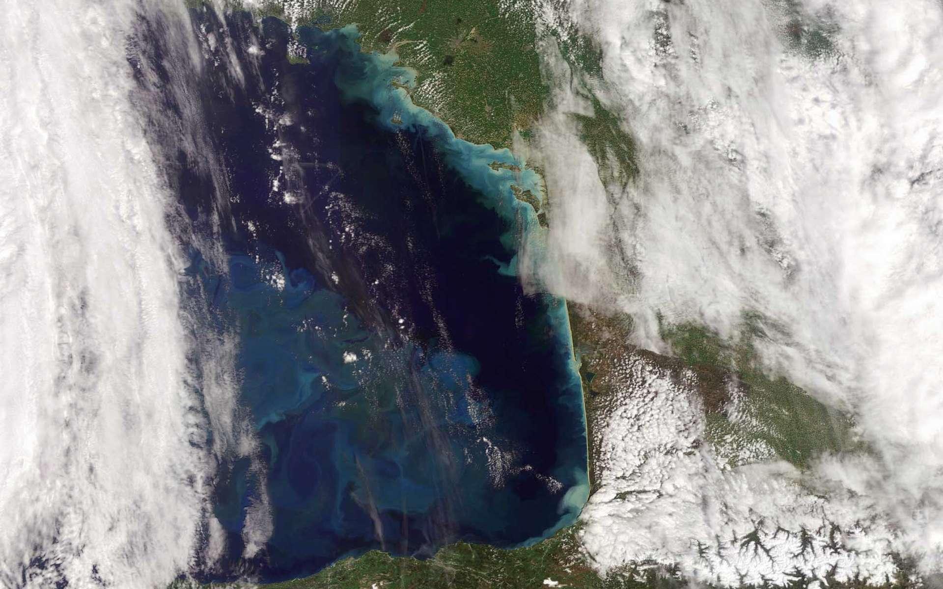 Cette image prise par Envisat montre l'efflorescence du phytoplancton dans le Golfe de Gascogne. Extension de l'Océan Atlantique Nord, ce golfe est bordé à l'Est par la côte ouest de la France (de la Bretagne à l'Aquitaine) et au Sud par la côte nord de l'Espagne (de la Galice au Pays Basque). Prise par la caméra Meris le 13 avril 2009, elle permet de distinguer des détails de 300 m au niveau du sol. Source Esa