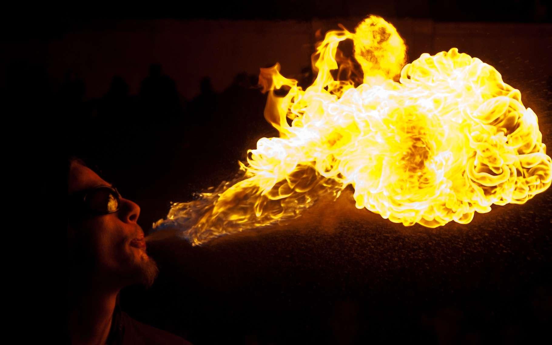 Comburant, combustible et apport d'énergie sont les trois ingrédients indispensables à la réaction de combustion. © Raphaël Vandon, Flickr, CC by-NC-ND-2.0