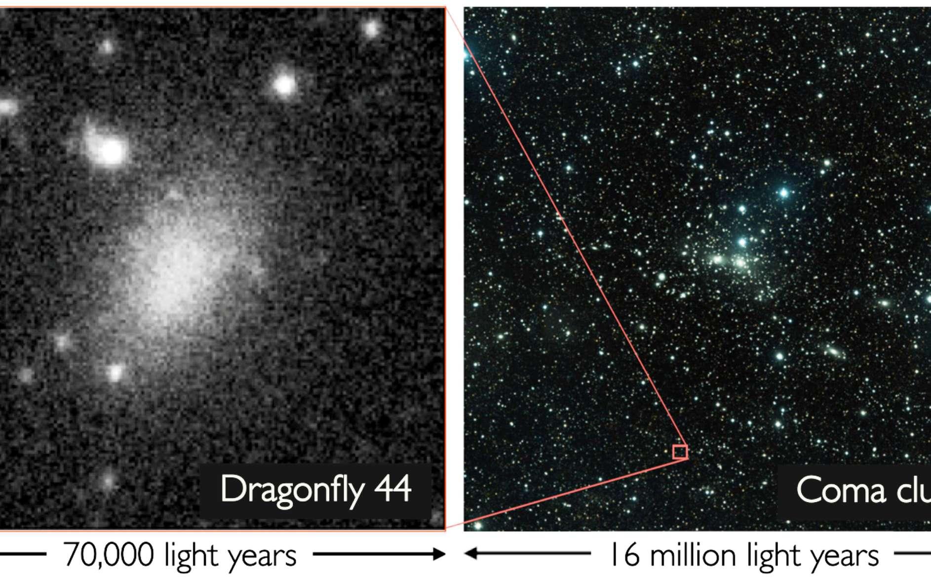 Un exemple de galaxie ultradiffuse, Dragonfly 44, observée dans l'Amas de Coma. © Pieter van Dokkum, Roberto Abraham, Jean Brodie
