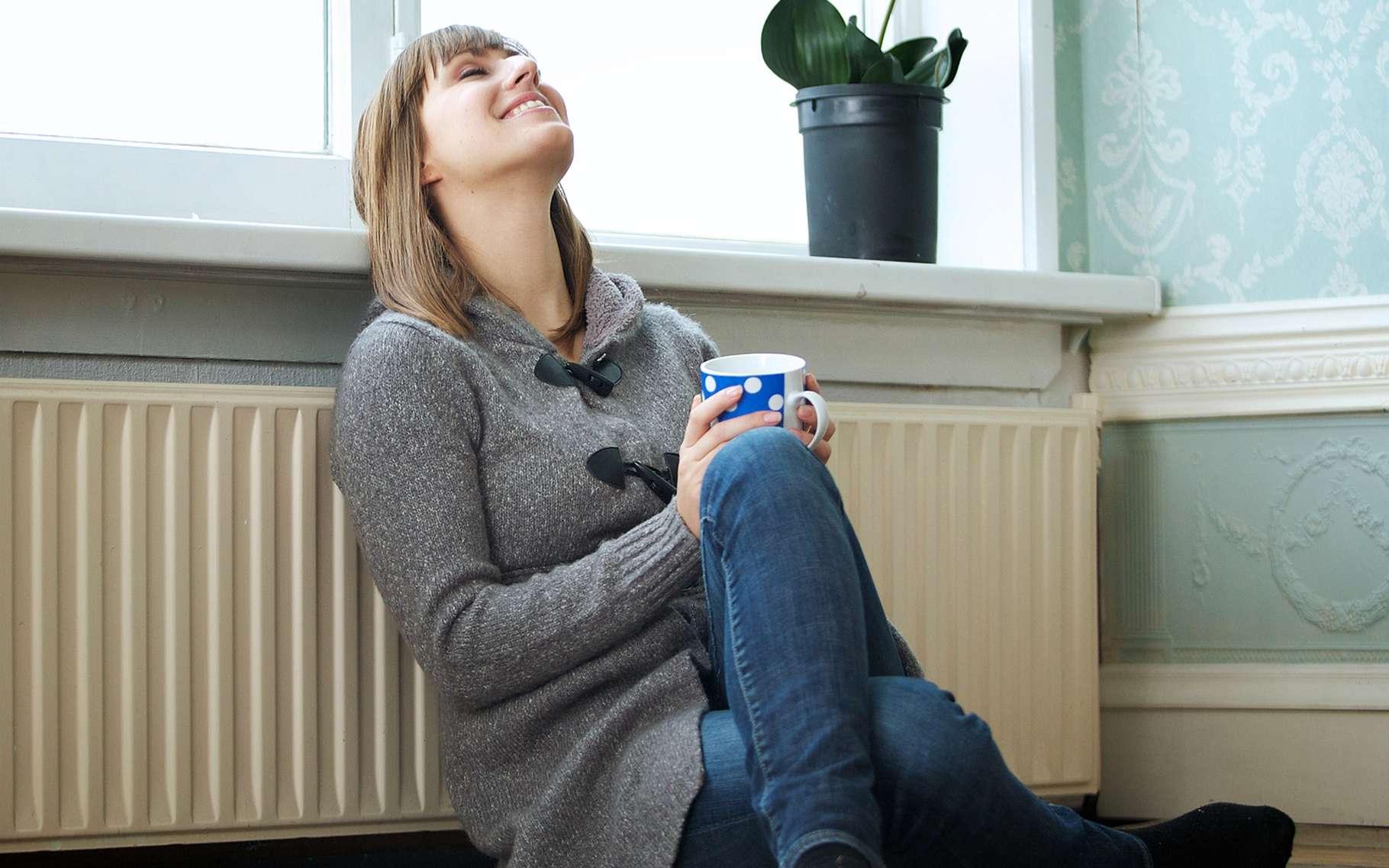 Pour vous, quelle est la température idéale dans votre maison ou appartement ? © mimagephotography, Shutterstock