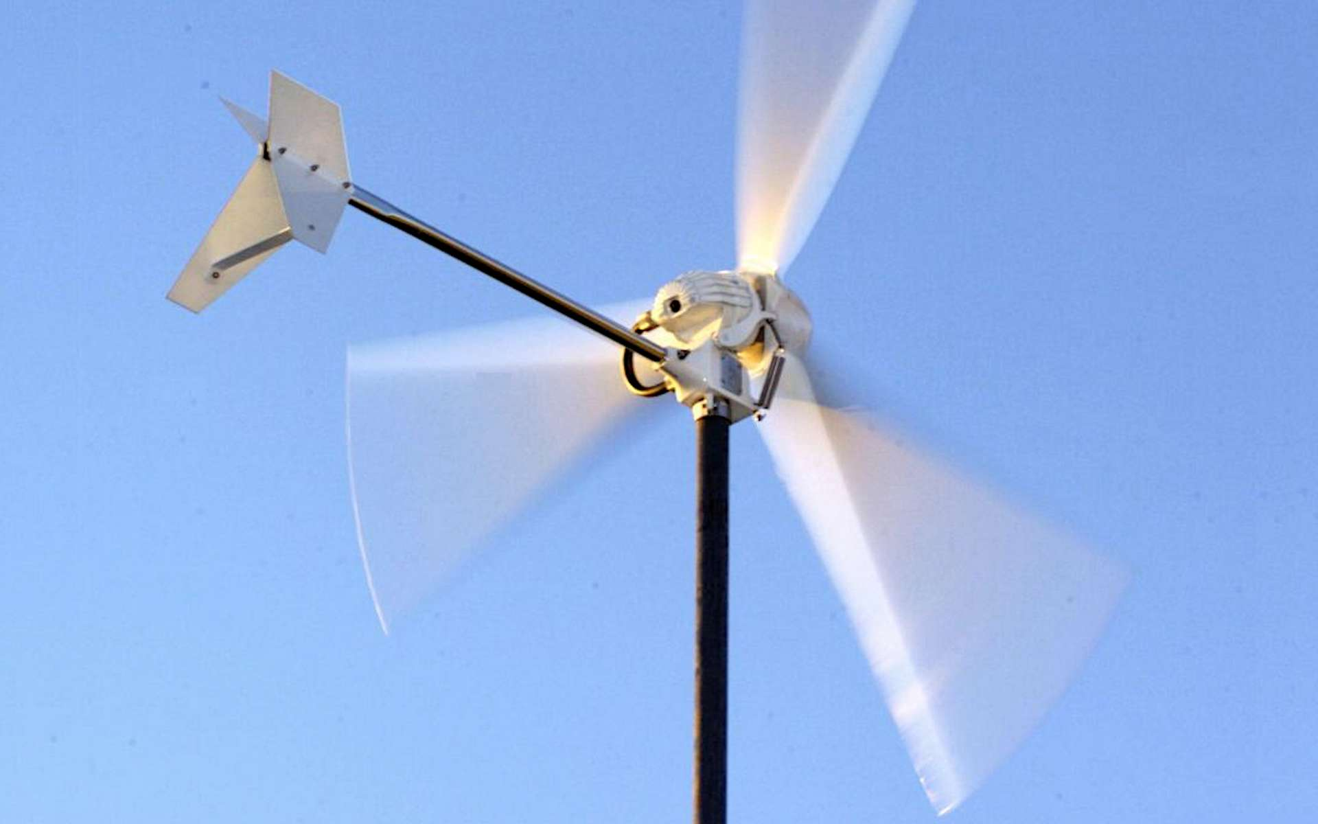 L'intérêt d'une éolienne chez soi. © True-North Power
