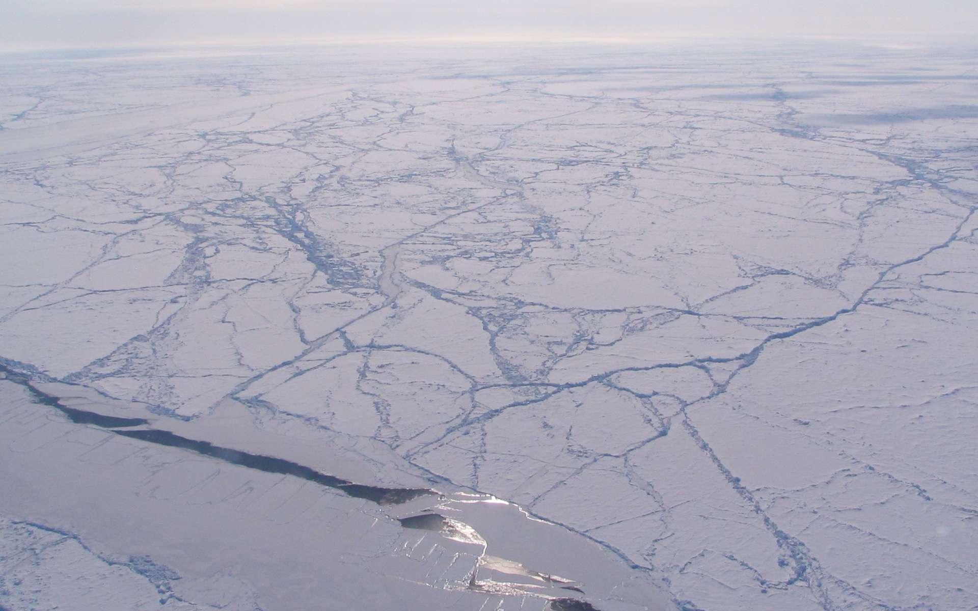 Le soleil se reflète sur la glace de mer du bassin canadien dans l'océan Arctique. Cet automne, le volume total de banquise arctique a diminué de 36 %. © Sinead Farrell, Nasa