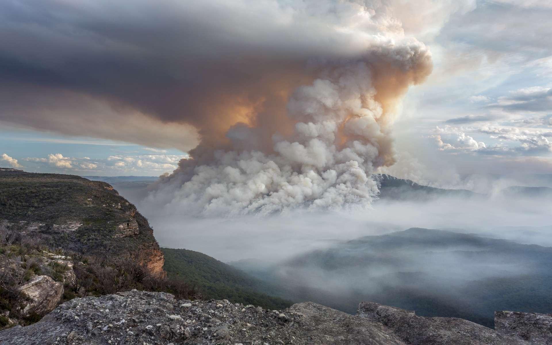 Les incroyables et spectaculaires répercussions des mégafeux en Australie sur la stratosphère. © Leah-Anne Thompson, Adobe Stock
