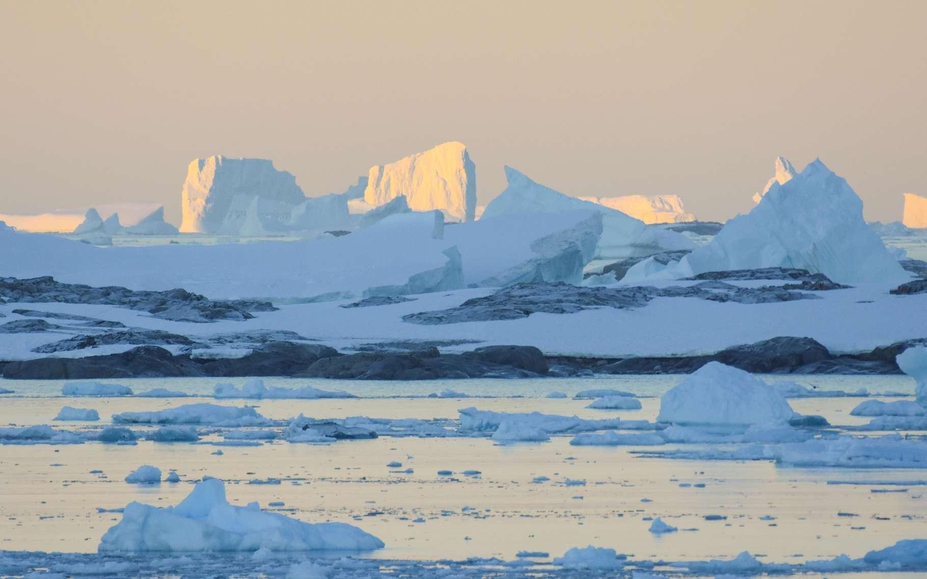 Les chercheurs de l'École polytechnique fédérale de Zurich (Suisse) et de l'université de Princeton (États-Unis) associent la bonne santé de la banquise antarctique — jusqu'à récemment en tout cas — au phénomène de rafraichissement des eaux de surface observé dans l'océan Austral. © Stéphane, Adobe Stock