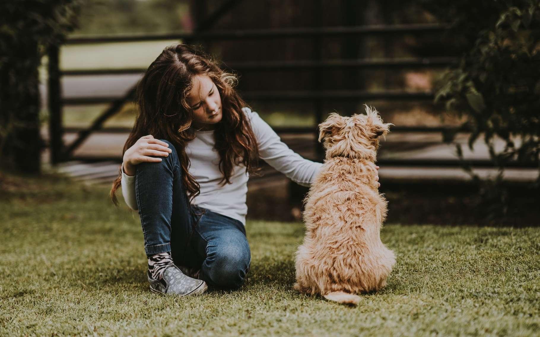 Parmi les objectifs de la Journée mondiale du chien : améliorer les conditions de vie des chiens, partout dans le monde. © Annie Spratt, Unsplash