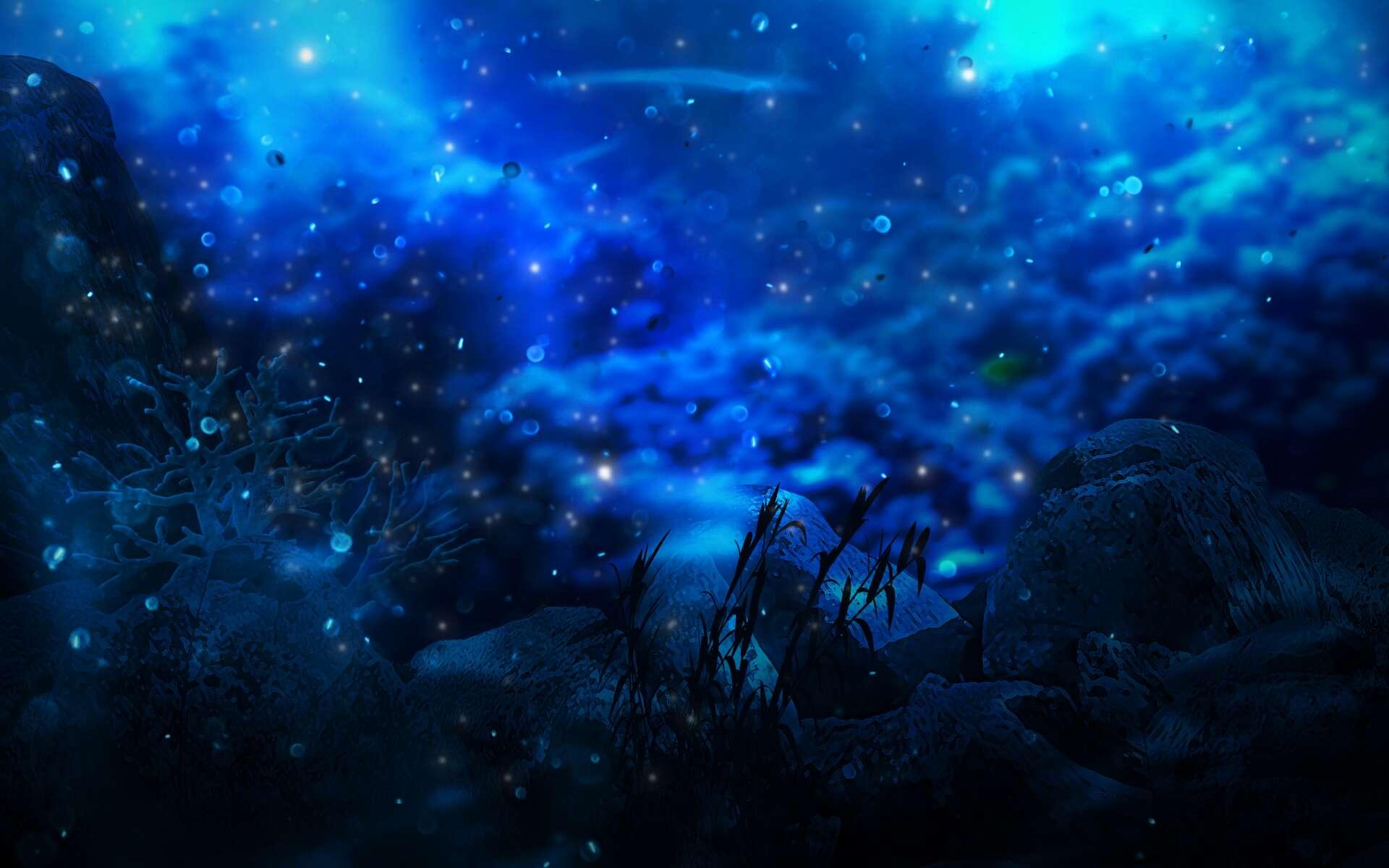 Illustration de fond marin. © MiaStendal, Adobe Stock