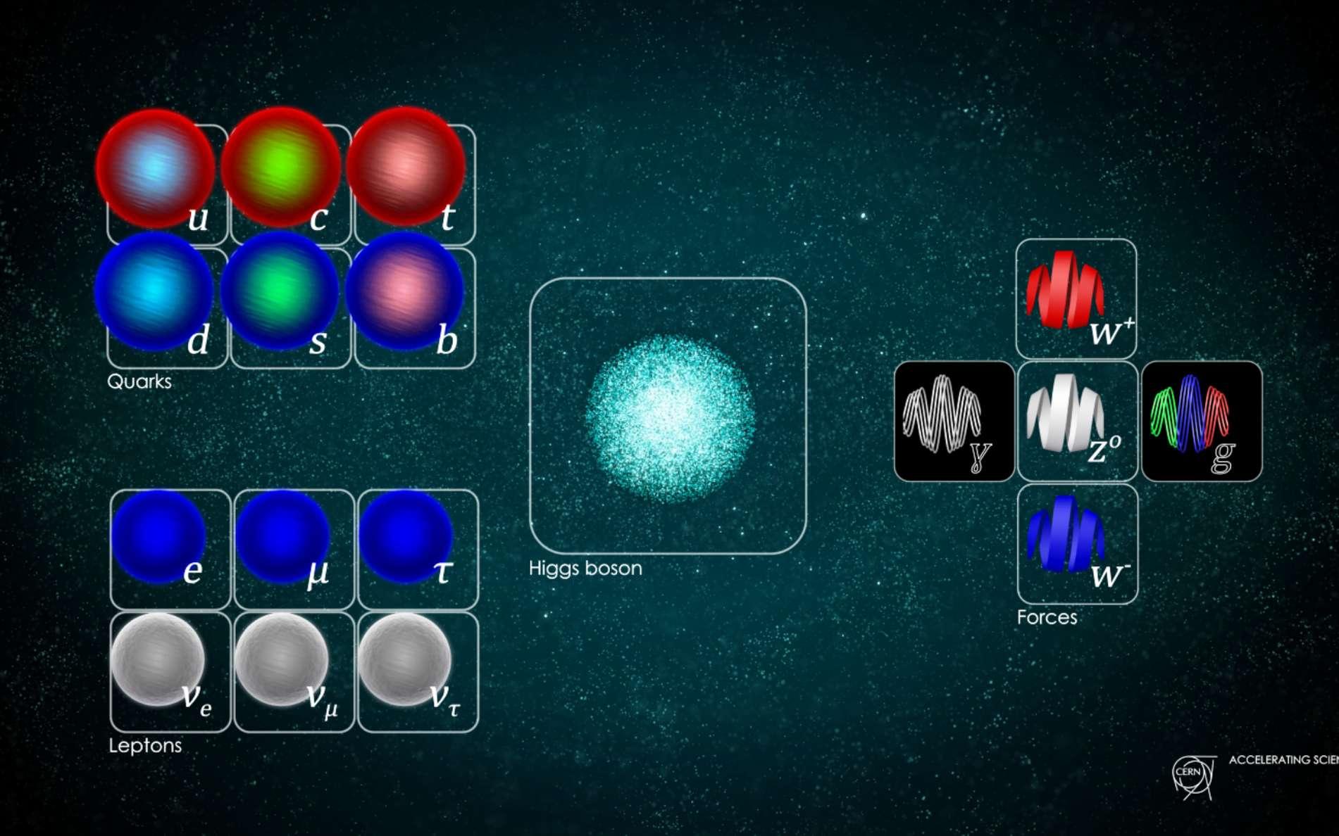 Le modèle standard des particules élémentaires, ici représenté, ignore la gravitation. Le tableau regroupe tous les quanta de matière et de force considérés comme des particules fondamentales : à gauche les quarks (notamment ceux formant les noyaux des atomes), les leptons (avec l'électron et les neutrinos) et, à droite, les vecteurs des forces (photon, bosons W+, W- et Z0 et gluon) avec, entre les deux le boson de BEH. Faudra-t-il ajouter cette année une nouvelle particule ? © Cern