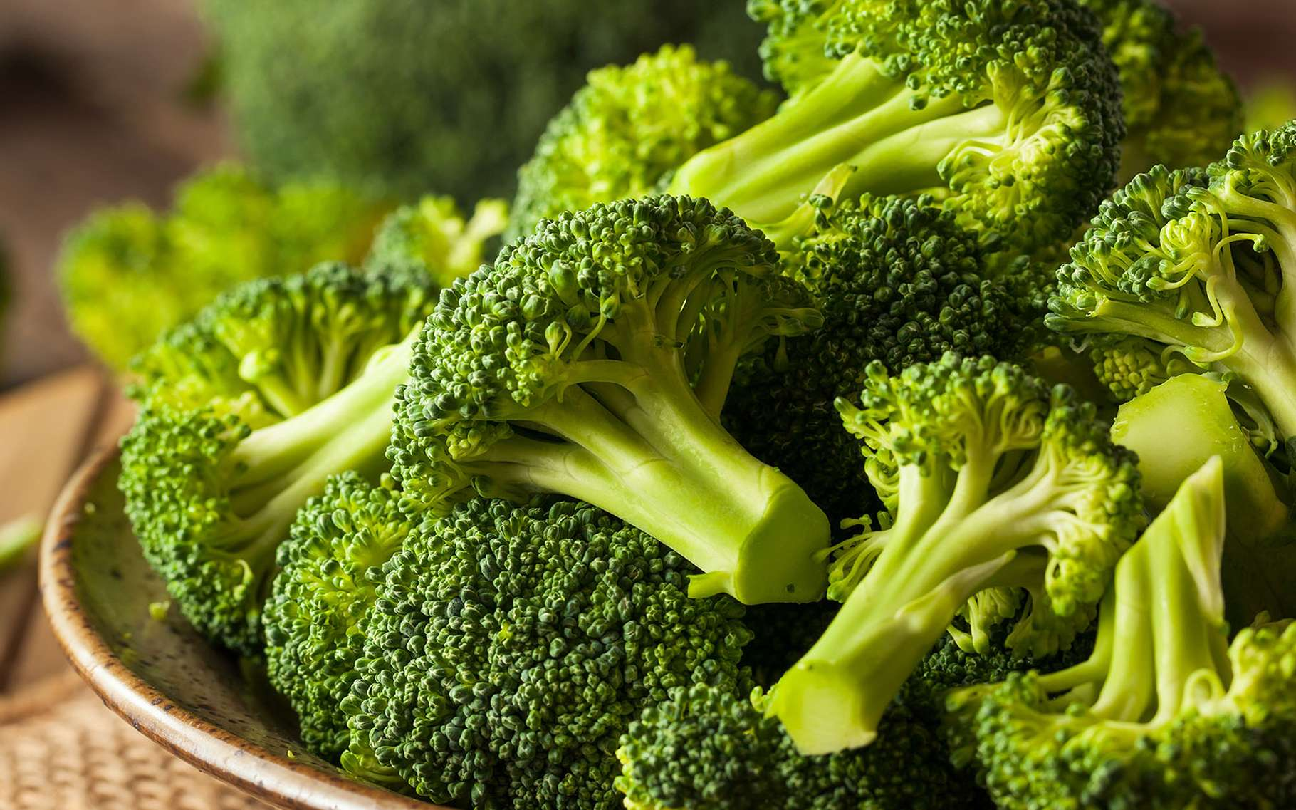 Broccoli, a species of Italian cabbage |  Folder