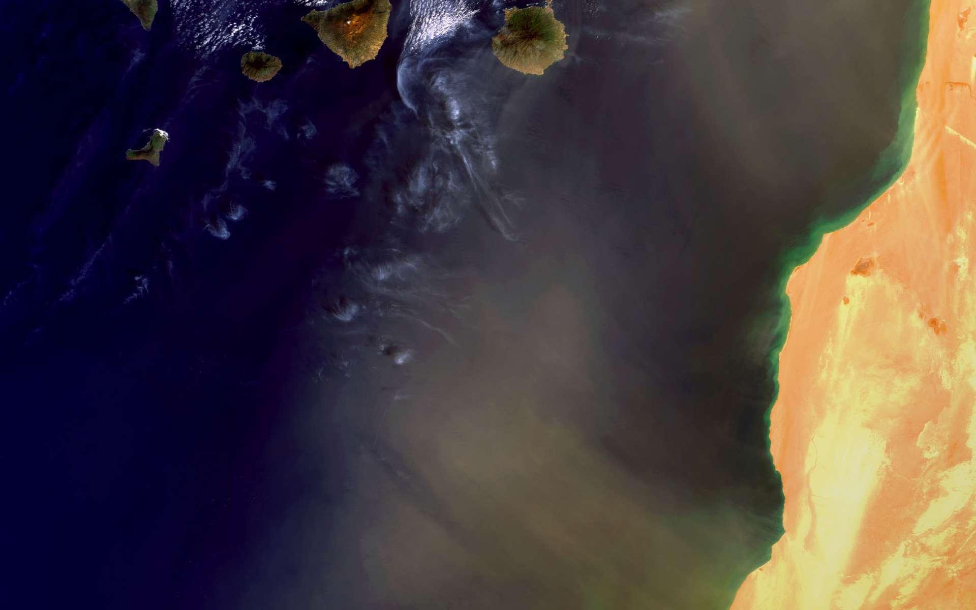 Un autre photo satellite d'une tempête de sable transportant de la poussière sur les îles Canaries. Crédit : Esa