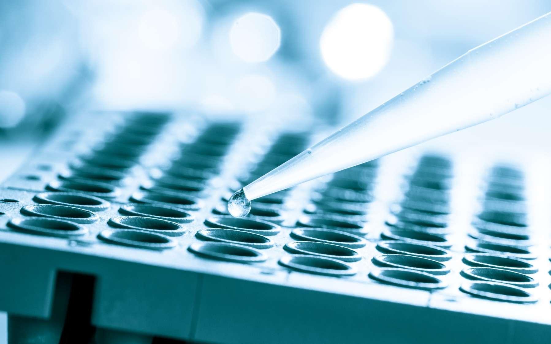 Dans ce protocole, les scientifiques ont modifié génétiquement des cellules d'un donneur. © science photo, Fotolia