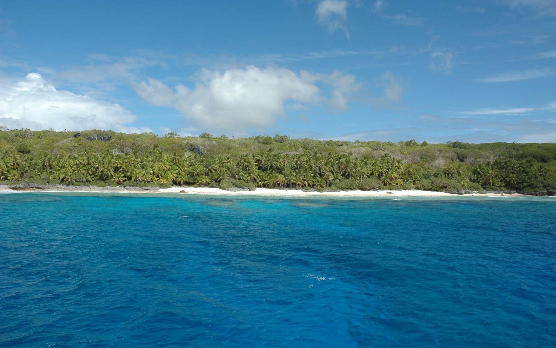 L'île Henderson, là où il n'y avait pas encore de plastique. Plage nord-ouest de l'Île d'Henderson, 2008. © Ron Van Oers, Unesco