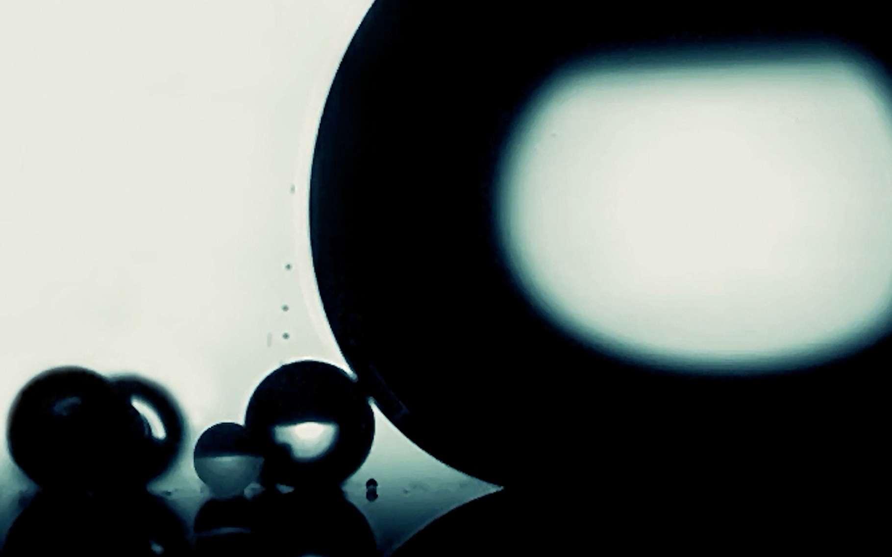La compétition Small World in Motion récompense chaque année les plus belles vidéos du monde de l'infiniment petit. © Nikon Small World in Motion