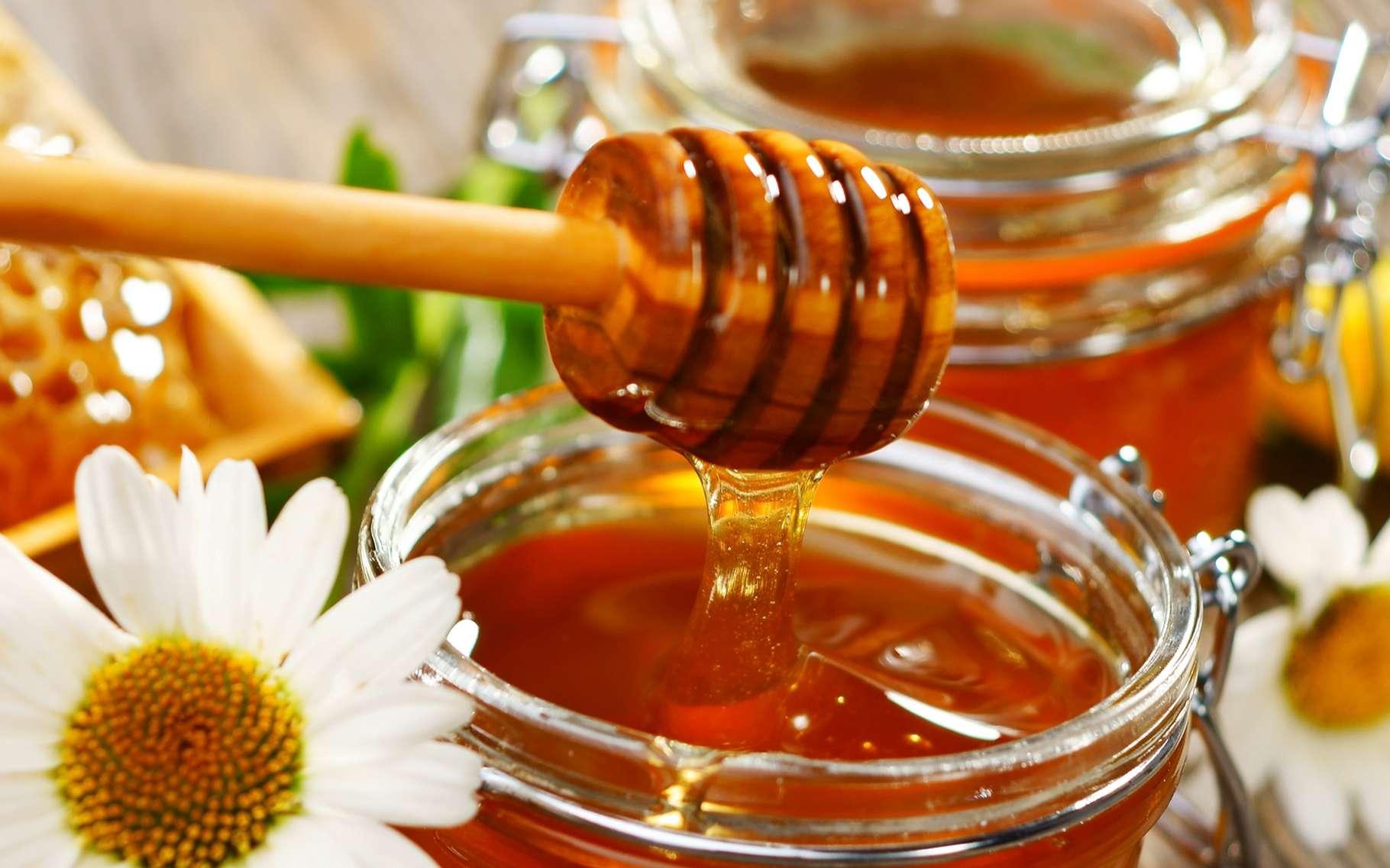 Connaissez-vous les bienfaits du miel ? © Dani Vincek, Shutterstock