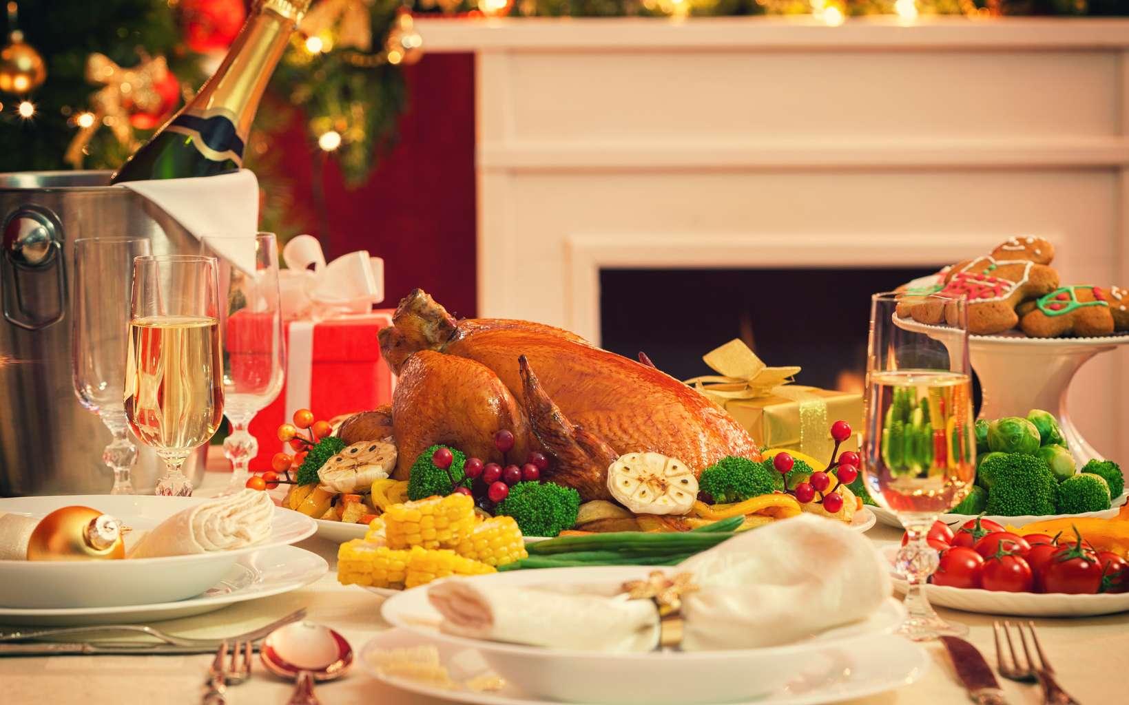 Quelques conseils pour apprécier les repas de fêtes de fin d'années. © k2photostudio, Fotolia