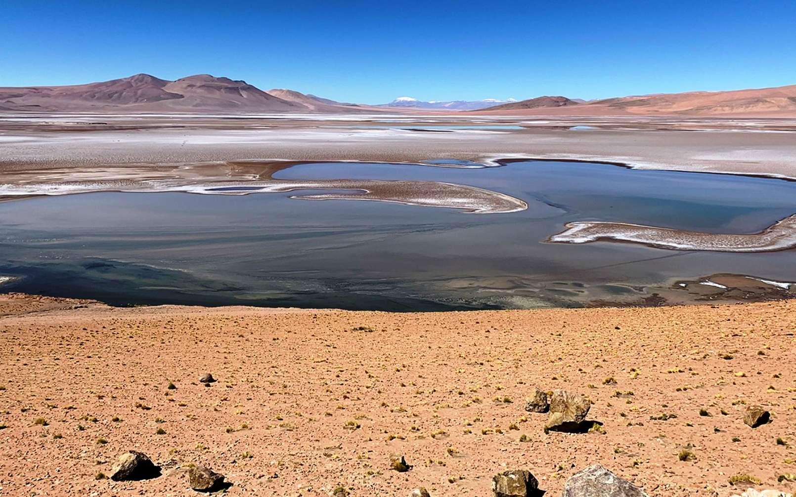 Rempli de lacs saumâtres, le plateau de Quisquiro dans l'Altiplano d'Amérique du Sud, au Chili, représente le type de paysage que les scientifiques pensent avoir existé il y a des milliards d'années sur Mars, dans le cratère Gale, que le rover Curiosity de la Nasa explore. © Maksym Bocharov