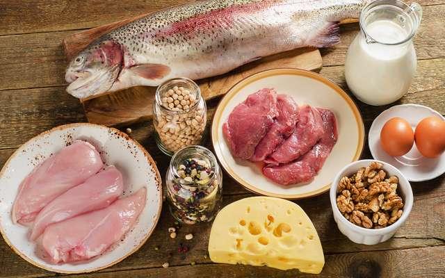 Quels sont les aliments les plus riches en protéines ?
