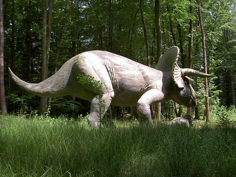 http://www.futura-sciences.com/uploads/tx_oxcsfutura/Triceratops-300109a_02.jpg