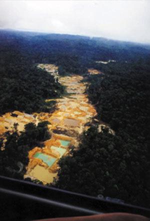 La fièvre de l'or ronge des pans de l'Amazonie