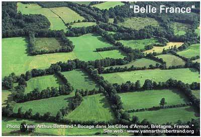 Drame au Darfour France