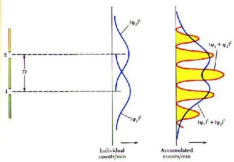 Le carré de la fonction d'onde psi donne la probabilité d'observer une particule en un point. A gauche on a déterminé par quelle fente est passée la particule, à droite non.