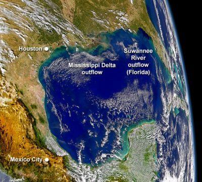 http://www.futura-sciences.com/uploads/tx_oxcsfutura/img/eutrophisationGolfeMexique400.jpg