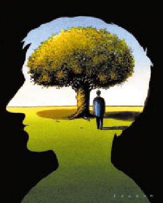 http://www.futura-sciences.com/uploads/tx_oxcsfutura/comprendre/d/images/cerveau_intro.jpg